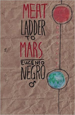 Cover for Meat Ladder to Mars