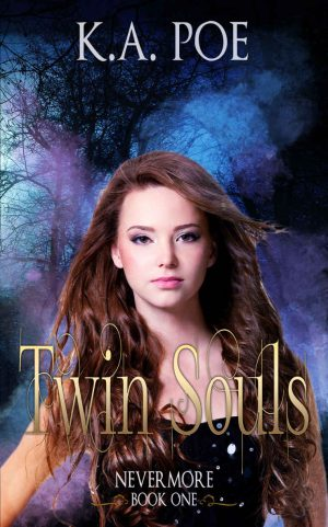 Cover for Twin Souls