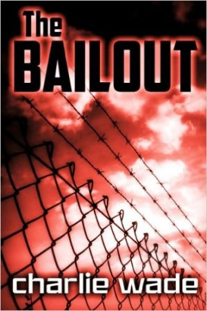 Cover for The Bailout