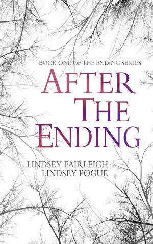 Cover for After The Ending