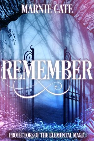 Cover for Remember