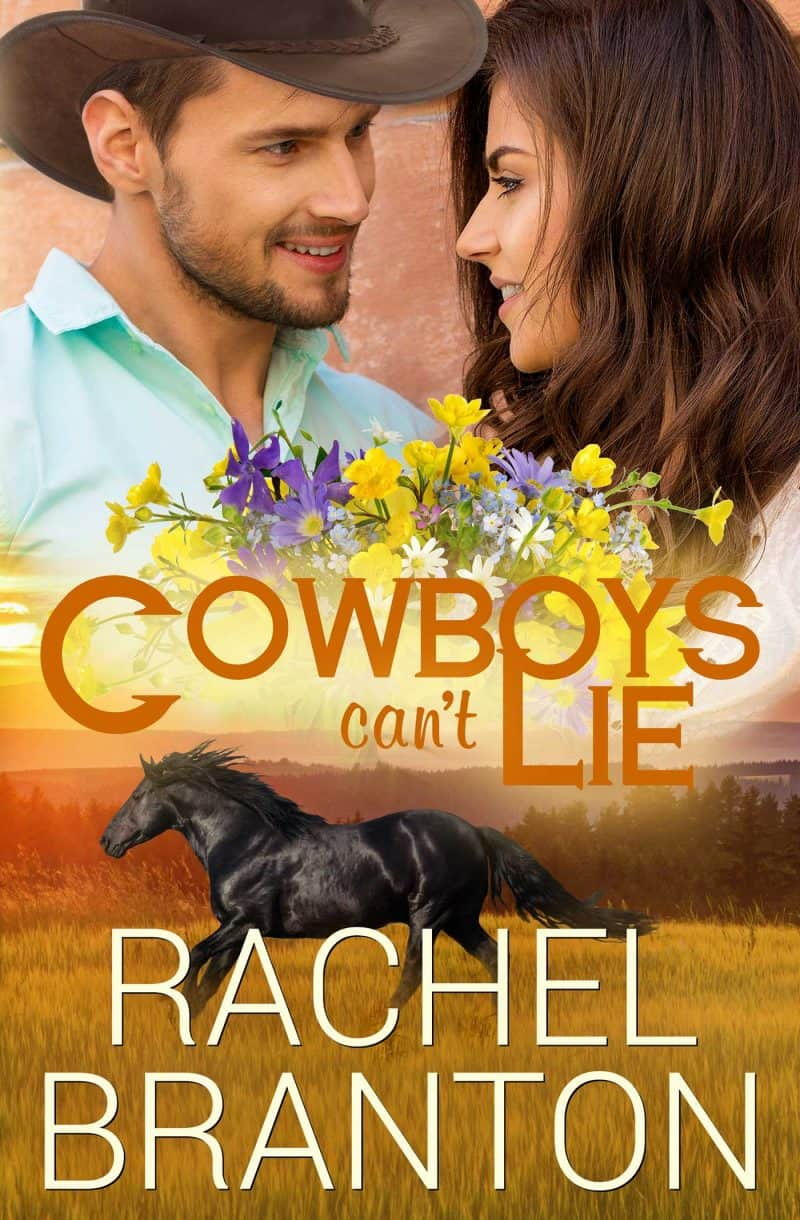 Cover for Cowboys Can't Lie: A Lily's House Novella