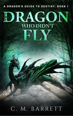 Cover for The Dragon Who Didn't Fly