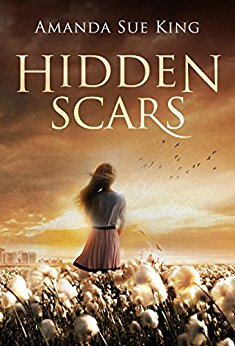 Cover for Hidden Scars
