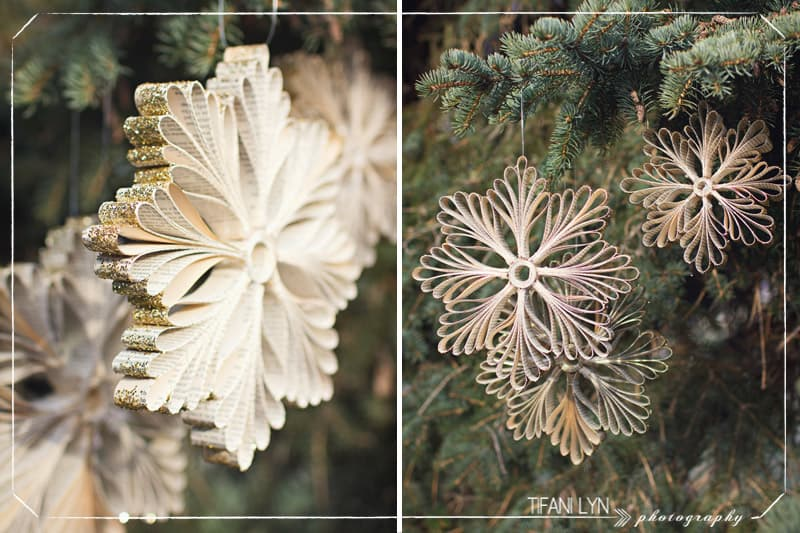 book snowflake