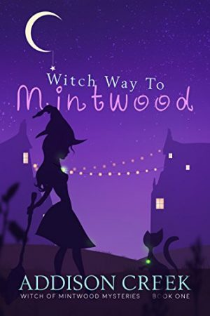 Cover for Witch Way to Mintwood