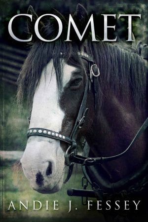 Cover for Comet