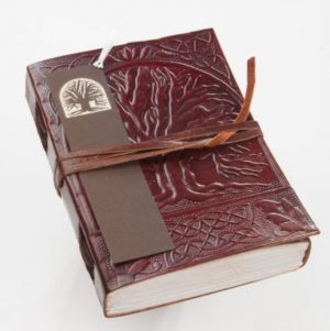 Tree of life writer's notebook