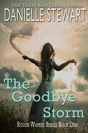 Cover for The Goodbye Storm