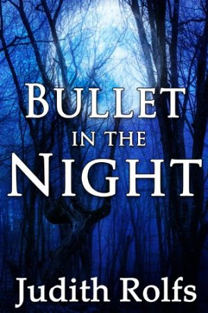 Cover for Bullet in the Night