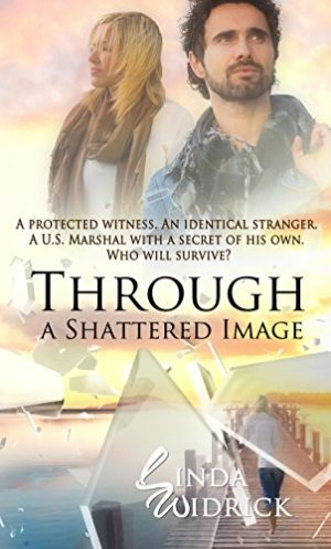 Cover for Through a Shattered Image