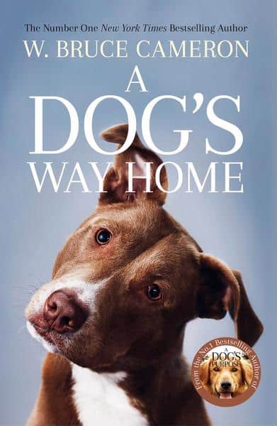books becoming movies in 2019 - A Dog's Way Home