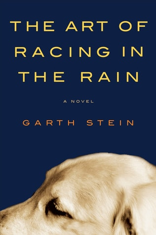 books becoming movies in 2019 - The Art of Racing In The Rain