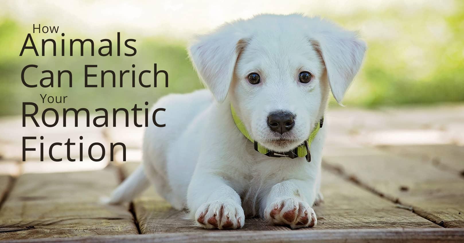 Animals can enrich your romantic fiction