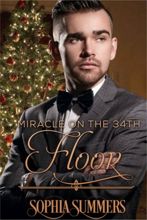 Cover for Miracle on the 34th Floor