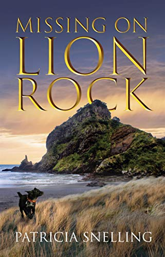 Cover for Missing on Lion Rock