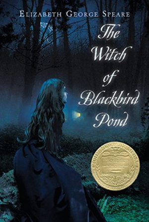Cover for The Witch of Blackbird Pond