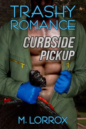 Cover for Trashy Romance: Curbside Pickup