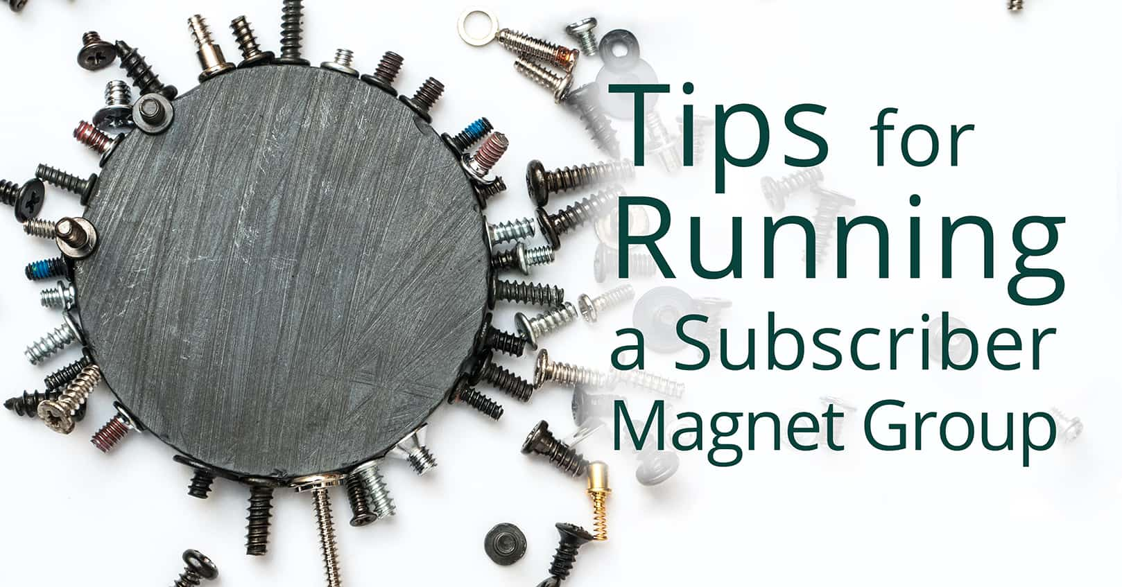 running a subscriber magnet group