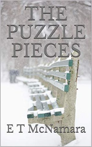Cover for The Puzzle Pieces