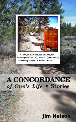 Cover for A Concordance of One's Life