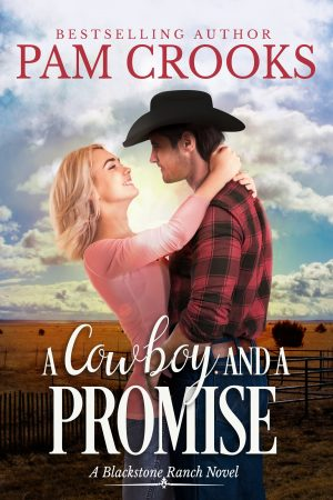Cover for A Cowboy and a Promise