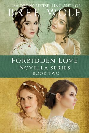 Cover for A Forbidden Love Novella Series Box Set: Novellas 5 - 8