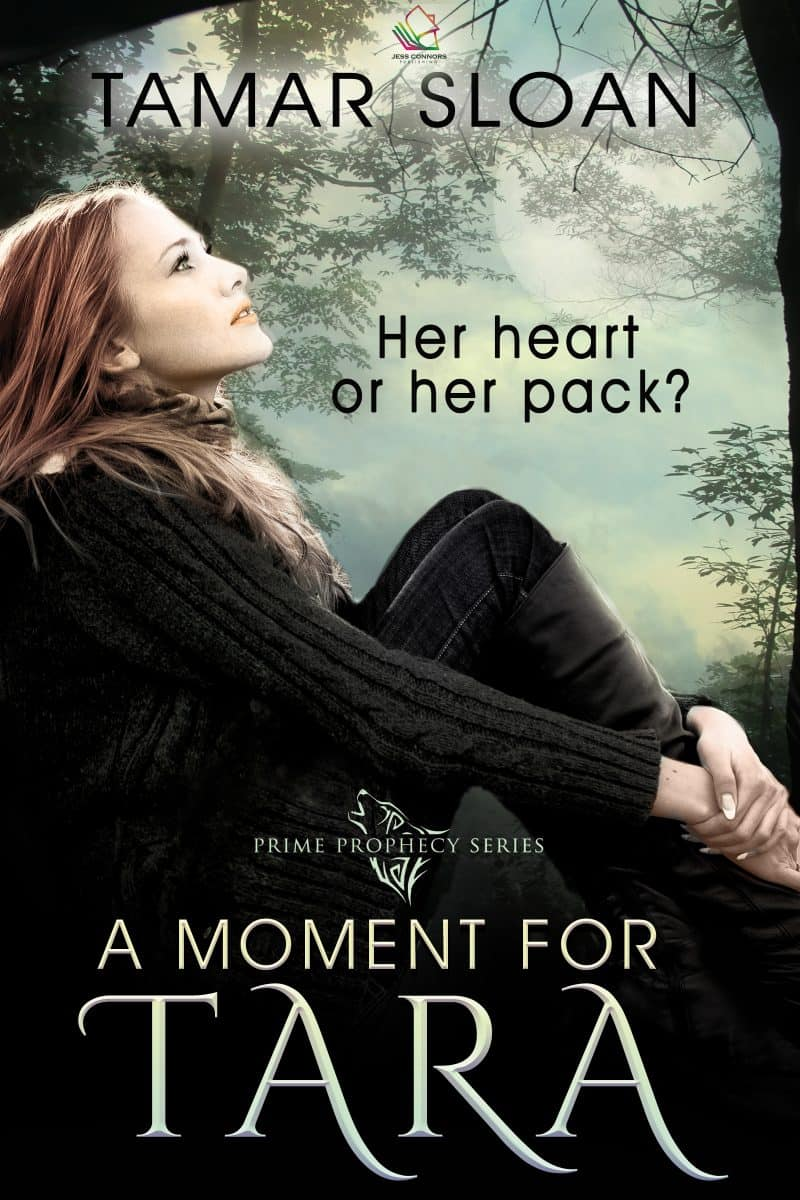 Cover for A Moment for Tara