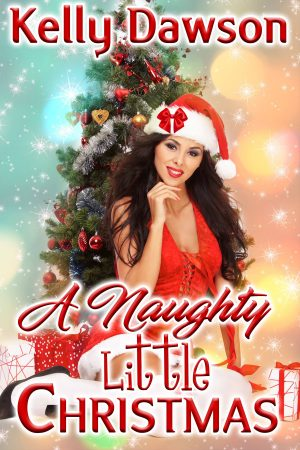 Cover for A Naughty Little Christmas