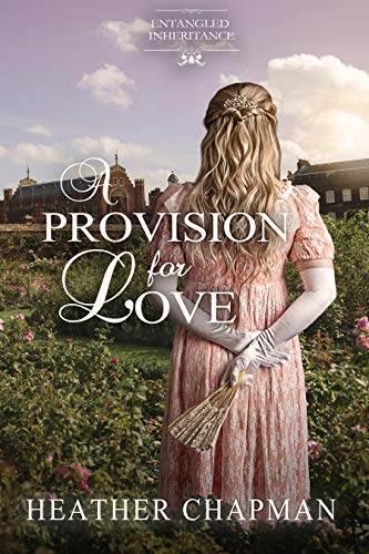 Cover for A Provision for Love