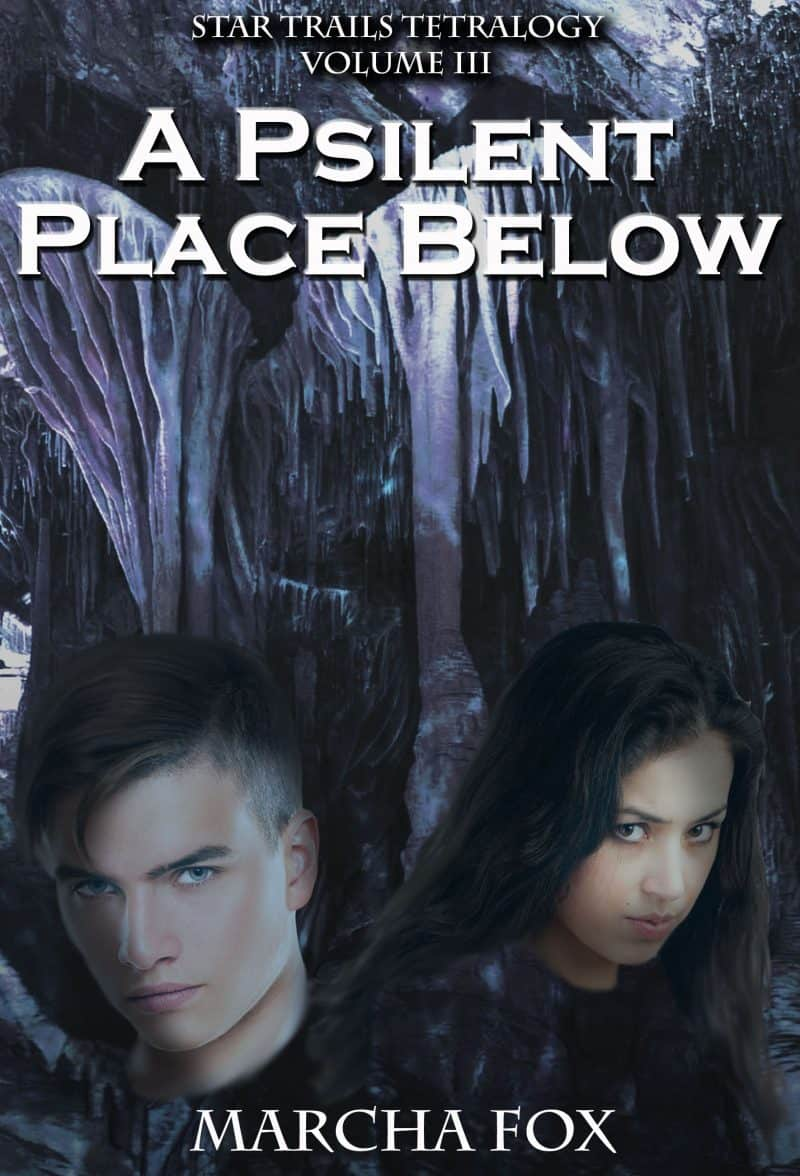 Cover for A Psilent Place Below