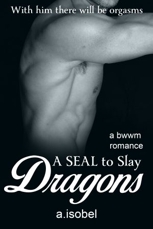 Cover for A SEAL to Slay Dragons