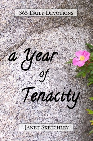 Cover for A Year of Tenacity
