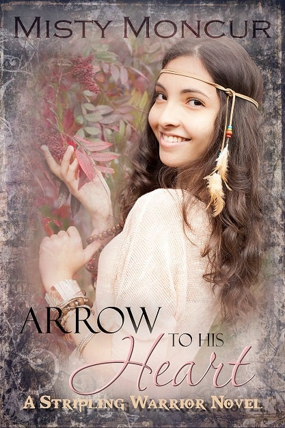 Cover for Arrow to His Heart