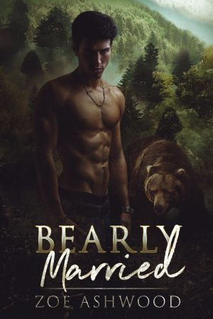 Cover for Bearly Married
