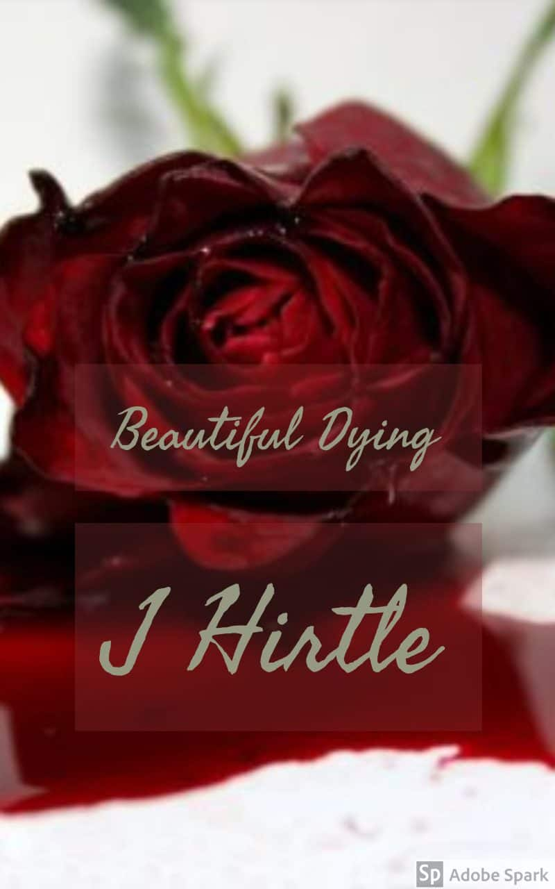 Cover for Beautiful Dying