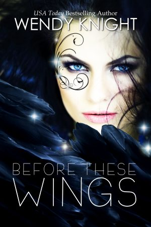 Cover for Before These Wings