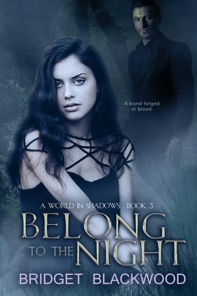 Cover for Belong to the Night