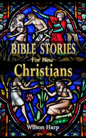 Cover for Bible Stories for New Christians