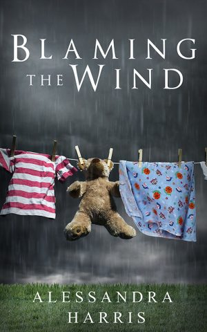 Cover for Blaming the Wind