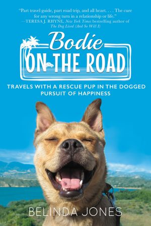 Cover for Bodie on the Road