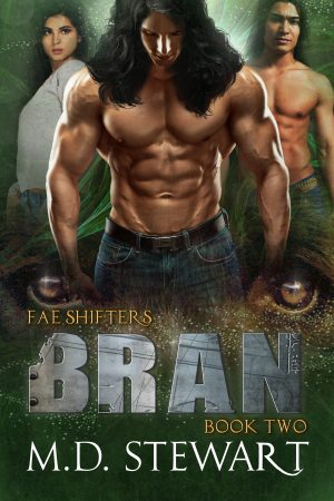 Cover for Bran