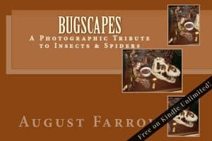 Cover for BugScapes: A Photographic Tribute to Insects & Spiders