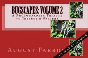 Cover for BugScapes: Volume 2: A Photographic Tribute to Insects & Spiders