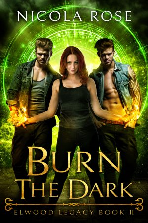 Cover for Burn the Dark
