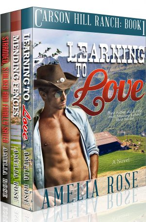 Cover for Contemporary Cowboy Romance Box Set