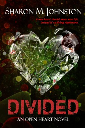 Cover for Divided