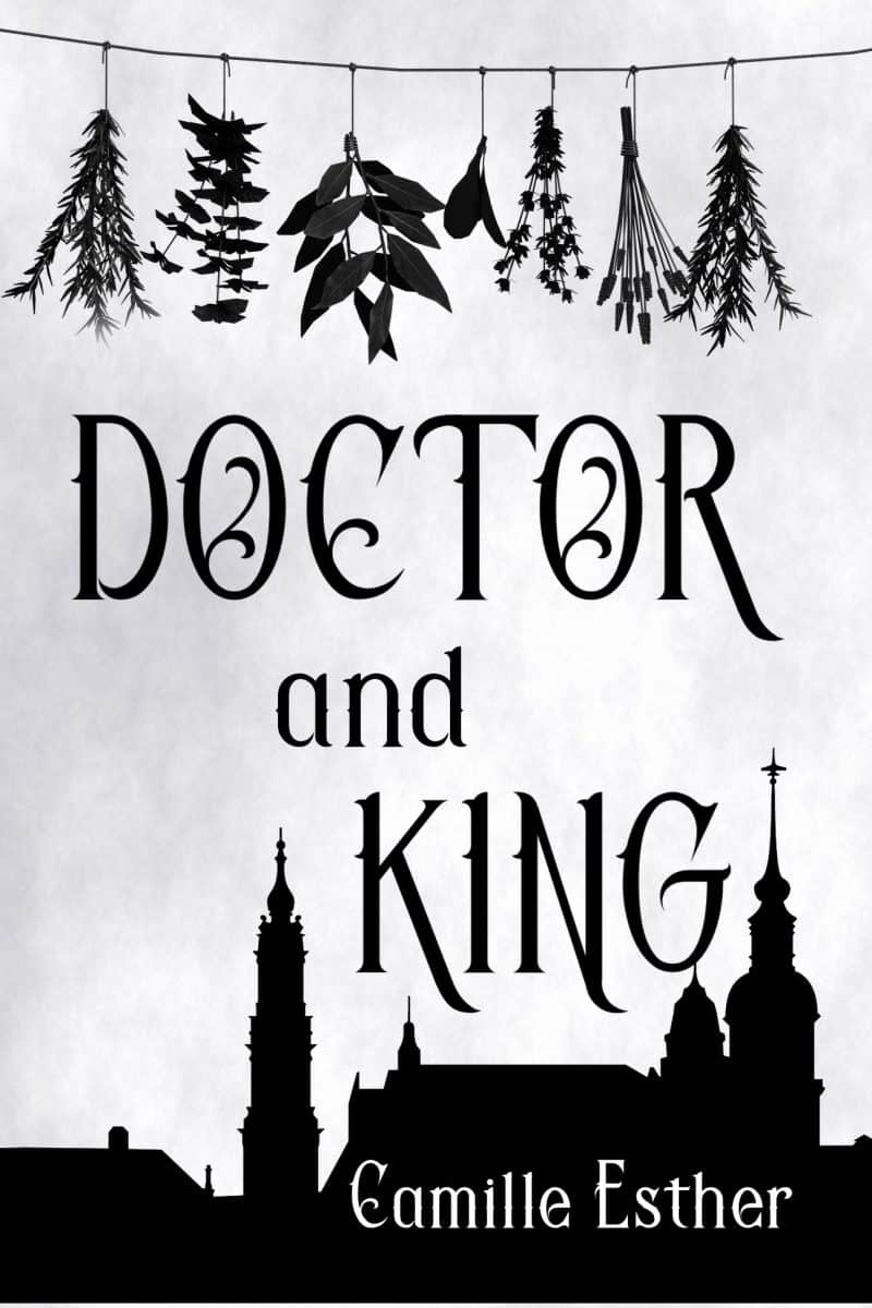 Cover for Doctor and King: A Sleeping Beauty Retelling