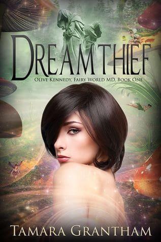 Cover for Dreamthief, Fairy World MD Book 1