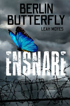 Cover for Ensnare